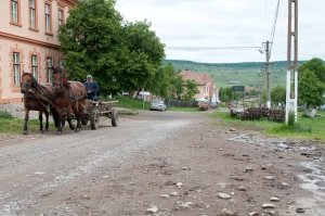 A horse and cart makes its way through Viscri