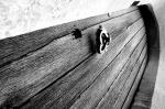 Door with wood grain