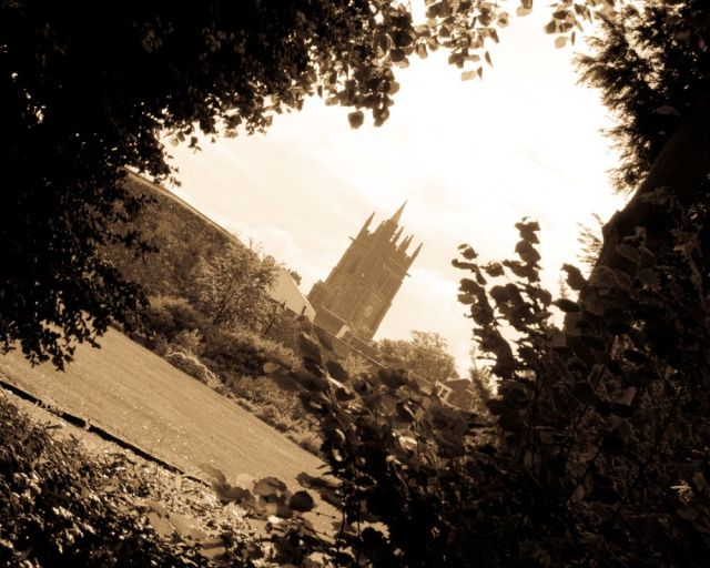 A church in Hertford, UK, viewed through trees.  In sepia.
