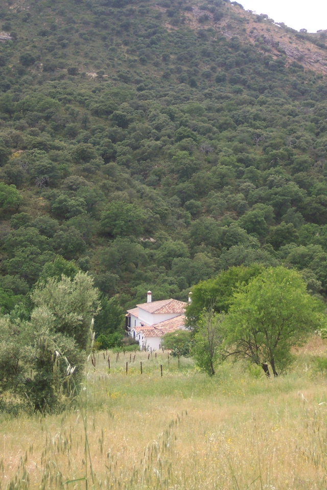 A white house tucked among the trees in the hills of Spain.