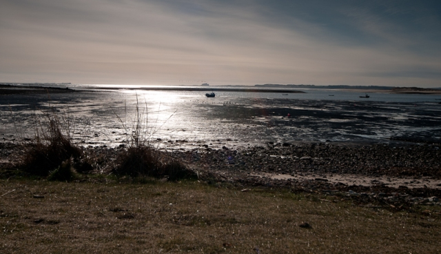 Sun-touched sea from Lindisfarne Island
