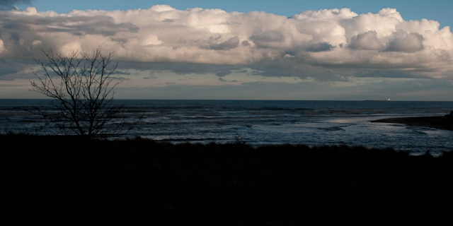 Northumberland seascape, with tree and foreground in silhouette