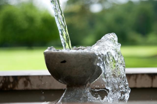 Wilton House Fountain (detail)
