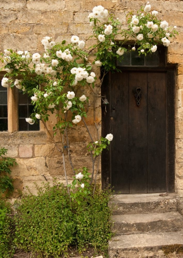 Roses over the door of a Cotswold cottage