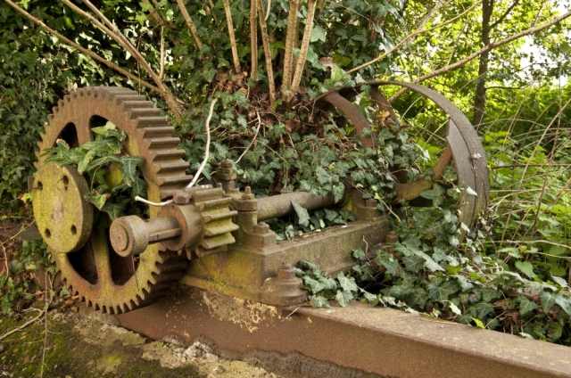 Machine overgrown with plants