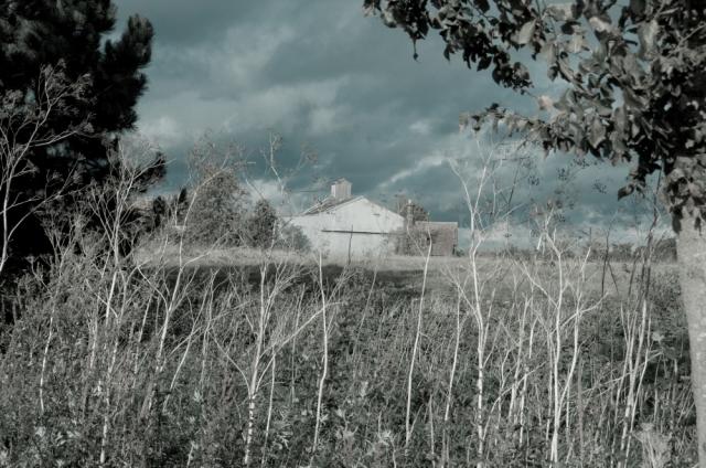 A distant barn